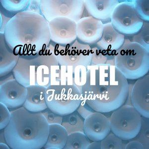 Allt du behöver veta om Icehotel i Jukkasjärvi