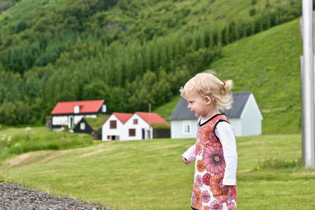 Vilja på Island