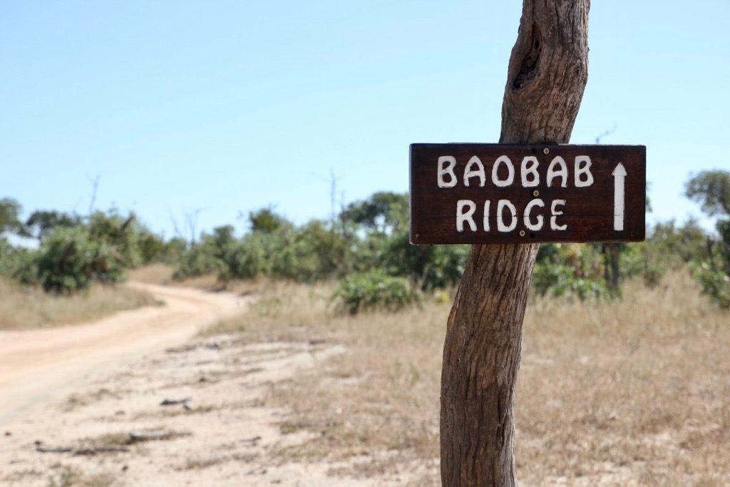 Skylt till Baobab Ridge